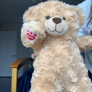Build-A-Bear Other - Build a bear brand new great condition teddy